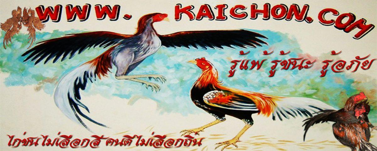 www.kaichon.com @2019 Tel:0646745133